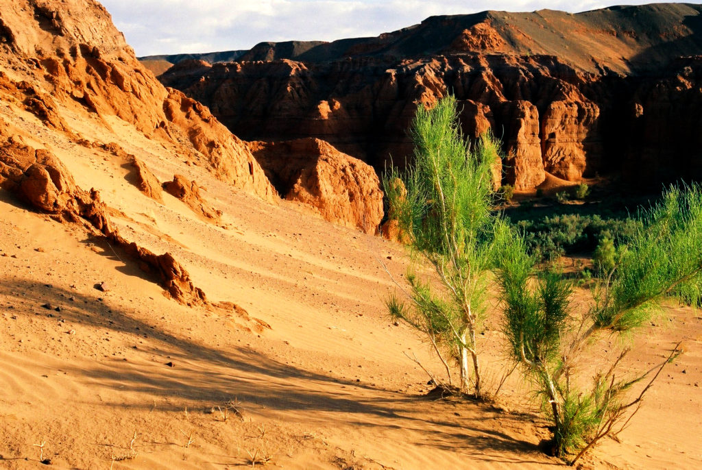 The best of Gobi Desert, Mongolia