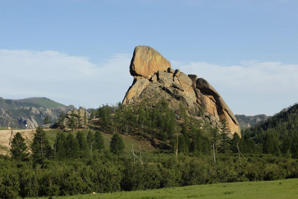 Mongolia travel testimonials
