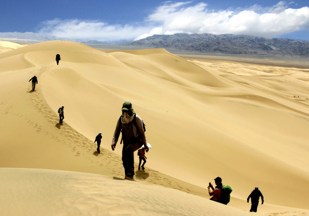 Climbing Khongoryn Els sand dunes is the most challenging activity in Mongolia.
