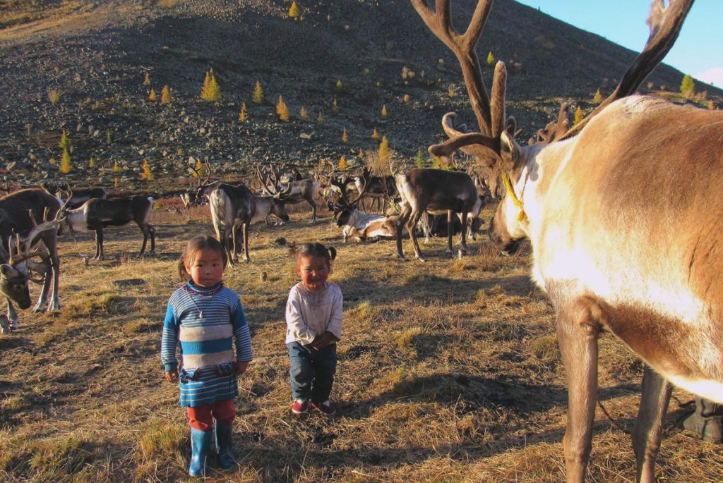 Reindeer tribe in Mongolia