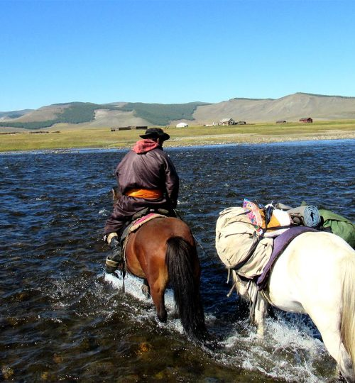 A horse guide Lkhagva is crossing the river with packed horse from the tour